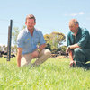 Over-sowing Boosts Pasture