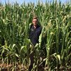 HM-114 corn from Barenbrug offers high yields and quality